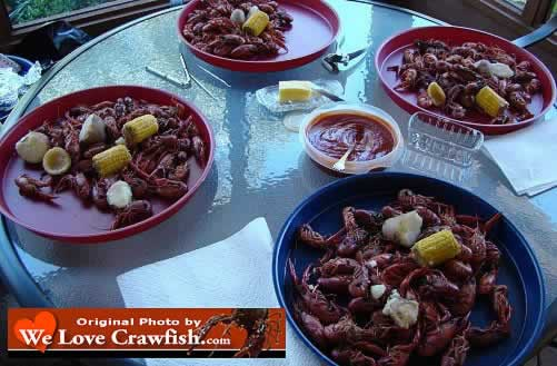 Hot, boiled crawfish ... let the feast begin!