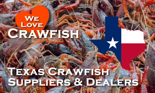 Texas Crawfish Suppliers and Dealers